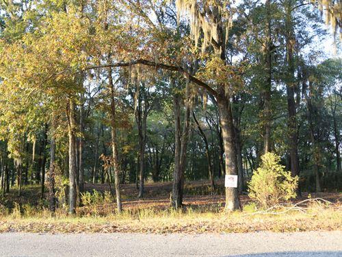 River Ridge Harbor Lot 41 : Montgomery : Alabama