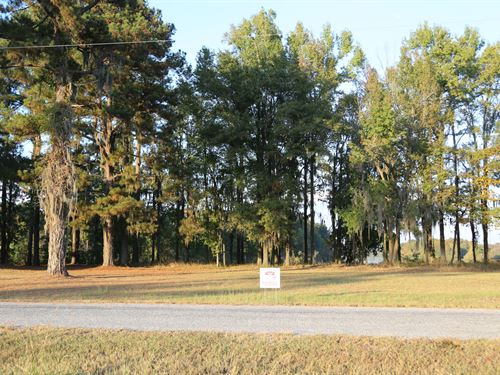 River Ridge Harbor Lot 26 : Montgomery : Alabama