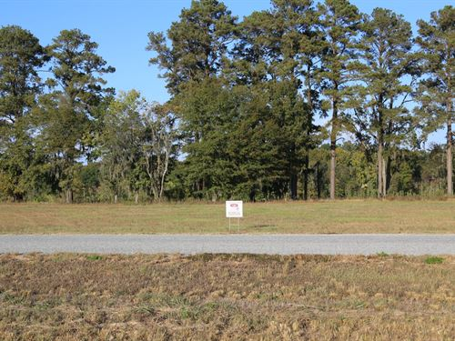 River Ridge Harbor Lot 33 : Montgomery : Alabama