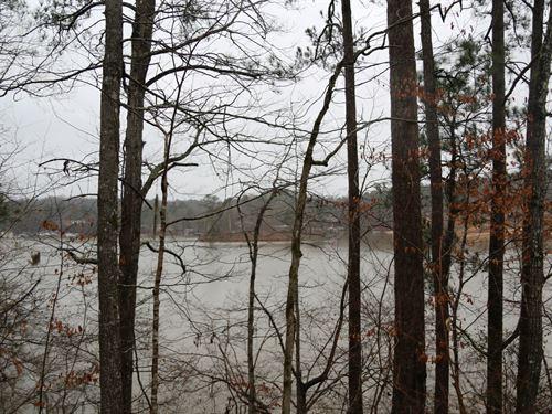 Lake Jordan Property : Titus : Elmore County : Alabama