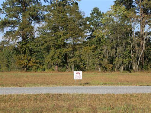River Ridge Harbor Lot 34 : Montgomery : Alabama
