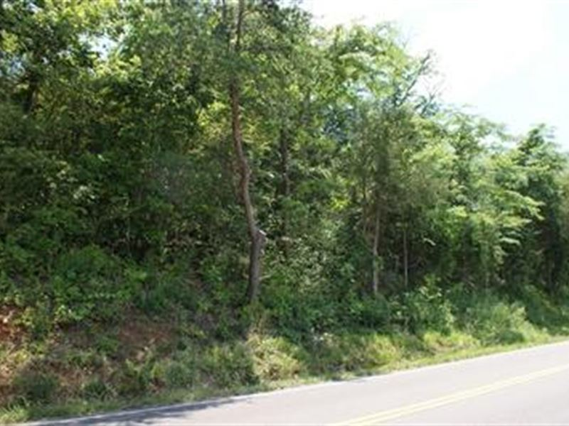 Building Tract Near New River : Ivanhoe : Wythe County : Virginia