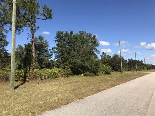 Investment Lot - Great Potential : North Port : Sarasota County : Florida