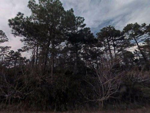 Marion County, Fl $32,000 : Ocklawaha : Marion County : Florida