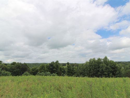 Cr 54, 14 Acres : Mt Perry : Perry County : Ohio