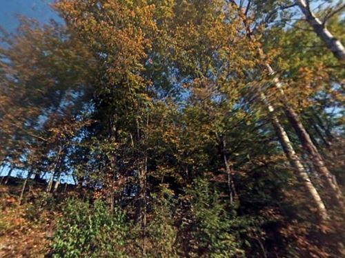 Wayne County, Pa $28,000 : Pleasant Mount : Wayne County : Pennsylvania