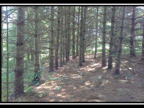 Corner Lot At Wolf Hill : McArthur : Vinton County : Ohio