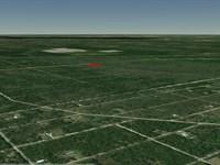 Huge Double Lot In Flagler Estates : Bunnell : Flagler County : Florida