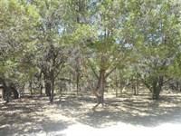 Lampasas County, TX Land For Sale : Kempner : Lampasas County : Texas