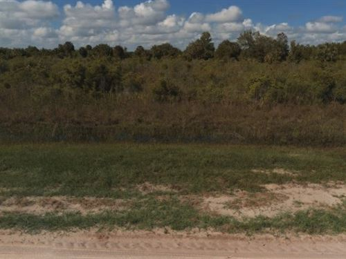 Okeechobee County, Fl $5,000 : Okeechobee : Florida
