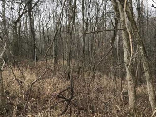 2 Acre Building Lot in Grace Land : Spencer : Owen County : Indiana