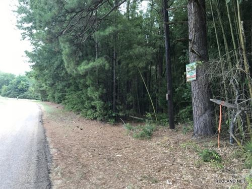 1 Ac, Wooded Tract For Home Site : Farmerville : Union Parish : Louisiana