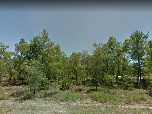 Hernando County, Fl $27,500 : Weeki Wachee : Hernando County : Florida