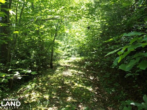 Easy to Access Lot With Pond Views : Spruce Pine : Mitchell County : North Carolina