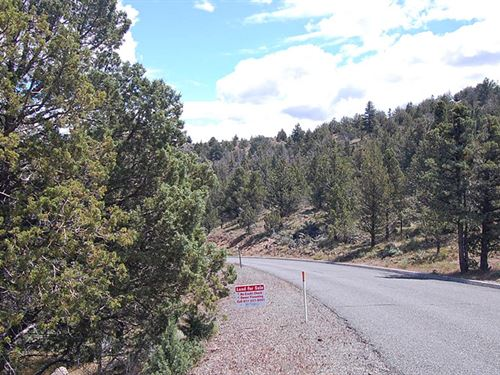 Beautiful Lot Near Weed California : Weed : Siskiyou County : California