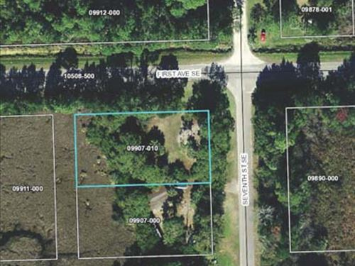 Multi-Seller Auction : Steinhatchee : Taylor County : Florida