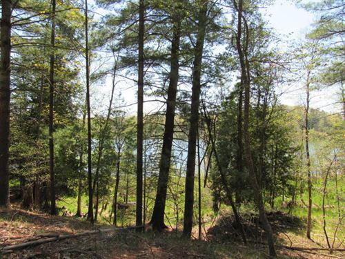 Cool Lake Frontage & Acreage : Irons : Lake County : Michigan
