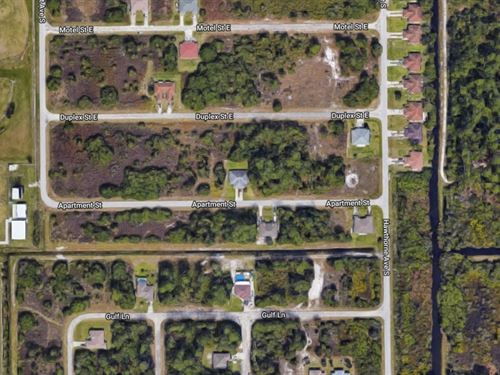 5 Wooded Lots In Lehigh Acres : Lehigh Acres : Lee County : Florida