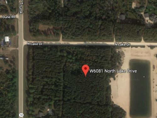 Beautiful Wooded Lot In Juneau, Wi : New Lisbon : Juneau County : Wisconsin