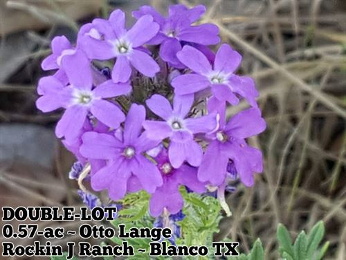 .57 Acres In Blanco County : Blanco : Texas