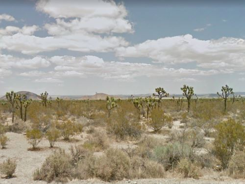 10.08 Acres In Llano, CA : Llano : Los Angeles County : California