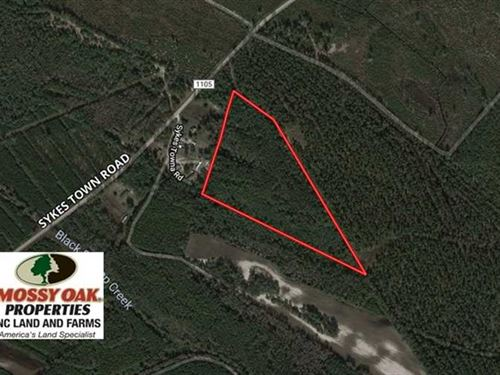 16.77 Acres of Hunting And Timber : Currie : Pender County : North Carolina