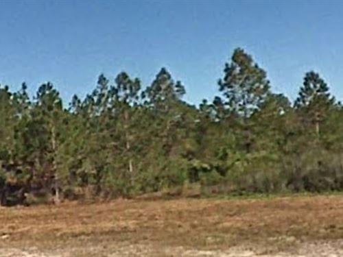 Polk County, Fl $12,500 Negotiable : Frostproof : Polk County : Florida