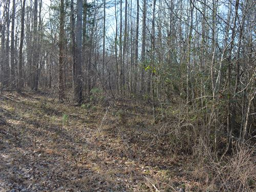 Tranquil 10 Acre Homesite : Siler City : Chatham County : North Carolina
