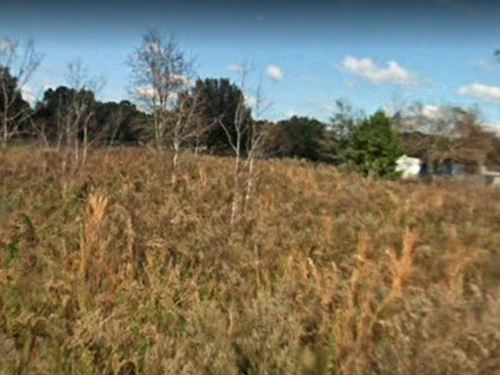 .3 Acres In Summerfield, FL : Summerfield : Marion County : Florida