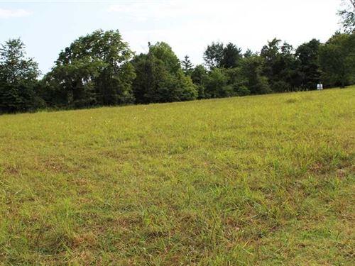 Lot For Sale in Bass Rock Subdivis : Van Buren : Carter County : Missouri