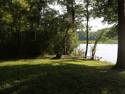 6475 Henderson Road Very Lovely Lot : Lowndesboro : Lowndes County : Alabama