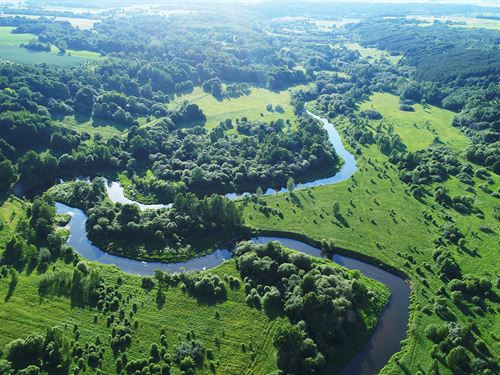 Ranches, River/Preserve Access : Sulfur Springs : Hopkins County : Texas