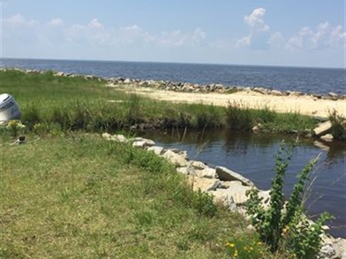 Waterfront Coastal Property : Columbia : Tyrrell County : North Carolina