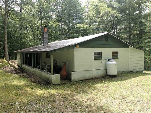 Reduced, 1 Acre of Hunting Land : Goshen : Rockbridge County : Virginia