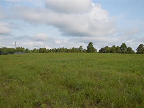 10 Acre Horse Farm Near Landrum : Campobello : Spartanburg County : South Carolina