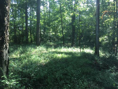 19.39 +/- Wooded Acres, Gordon Co : Calhoun : Gordon County : Georgia