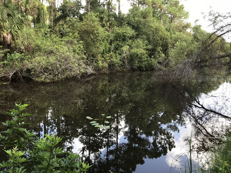 Waterfront Paradise - Fish & Kayak : North Port : Sarasota County : Florida