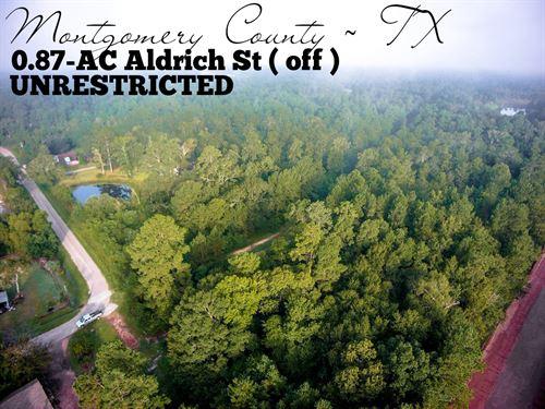 .87 Acres In Montgomery County : Montgomery : Texas