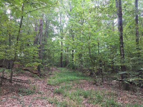 Beautiful Acreage Priced To Sell : Macon : Bibb County : Georgia