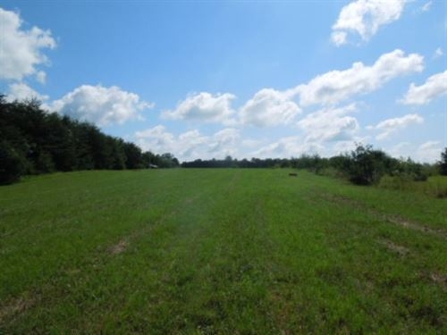 8.73 Acres, No Restrictions : Cookeville : Jackson County : Tennessee