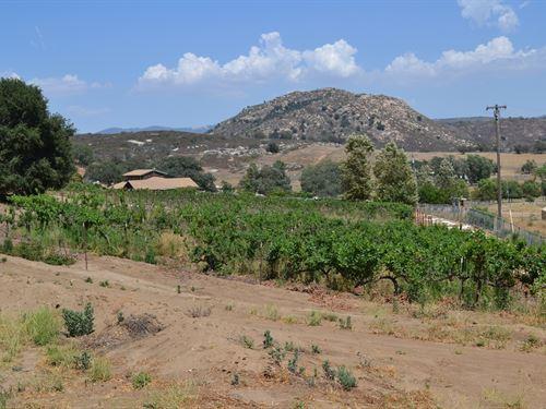 Rancho Ballena : Ramona : San Diego County : California