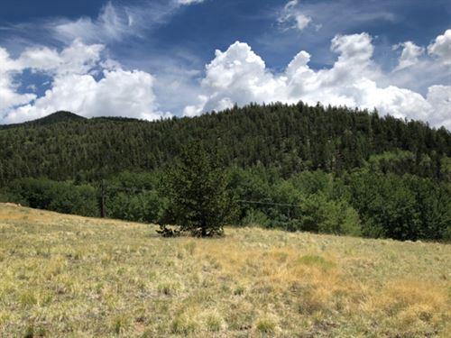 4816531, Best Parcel Of Vacant Lan : Bonanza : Saguache County : Colorado