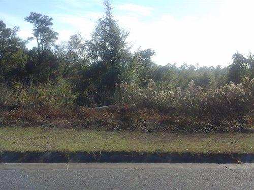 .25 Acres In Milton, FL : Milton : Santa Rosa County : Florida