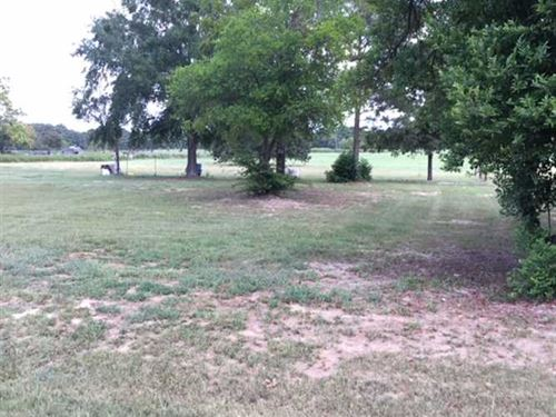2.56 Acre Lot For Sale in Tecula : Jacksonville : Cherokee County : Texas