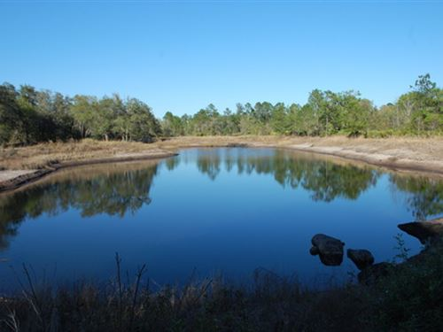 10 Acres With Pond A-534 : Keystone Heights : Clay County : Florida