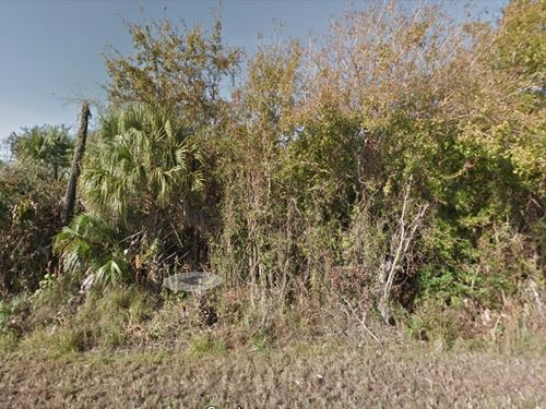 Wooded 4.81 Acres In Polk County Fl : Lakeland : Polk County : Florida