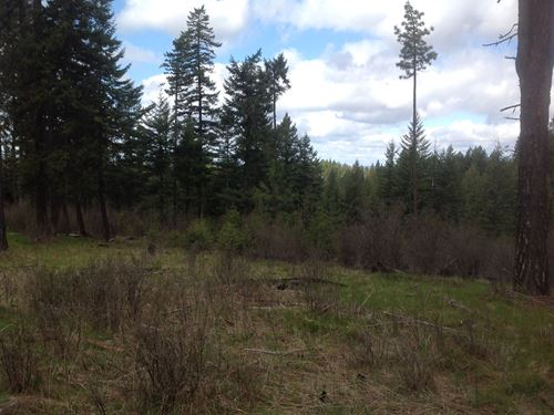 Wooded Recreational Small Acreage : Kendrick : Clearwater County : Idaho