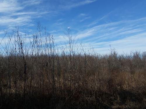 Recreational Land Richland Parish : Rayville : Richland Parish : Louisiana