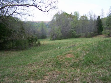 18 Acres Pastureland and Creek : Millerville : Clay County : Alabama