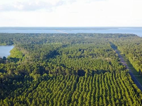 5.9 Acres Lake Sam Rayburn Land : Broaddus : San Augustine County : Texas